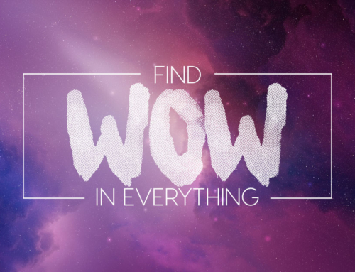 Find WOW in Everything